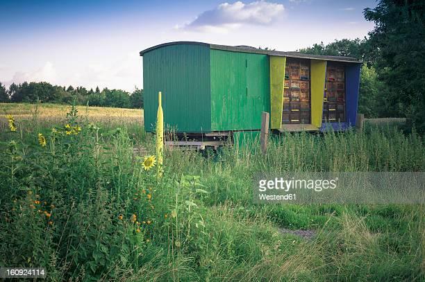 Germany, Saxony, View of beekeeping