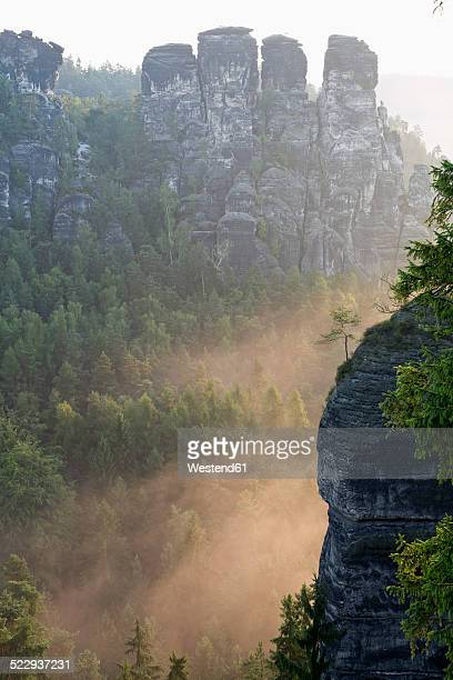 Germany, Saxony, view to Gansfels at Elbe Sandstone Mountains in the morning mist