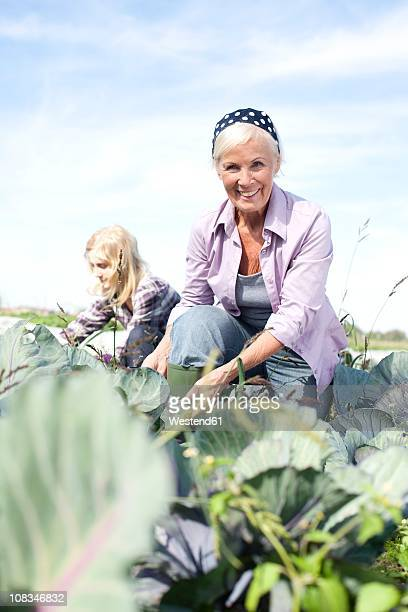 Germany, Saxony, Women working at the farm