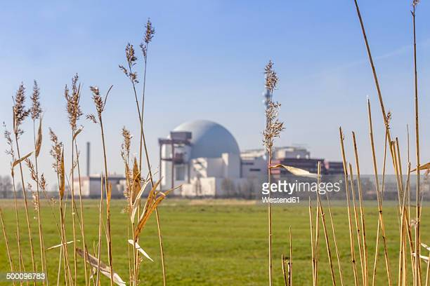 Germany, Schleswig-Holstein, Brokdorf, grasses and nuclear power plant in the background