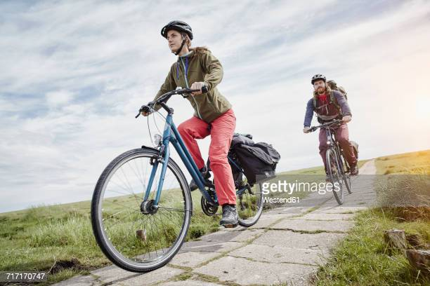 germany, schleswig-holstein, eiderstedt, couple riding bicycle through salt marsh - schleswig holstein stock photos and pictures