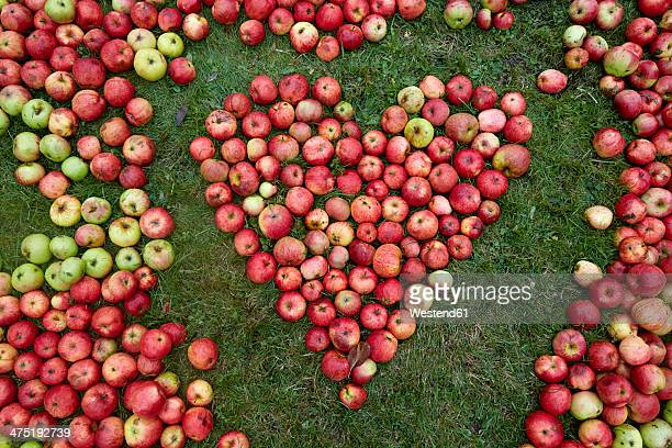 Germany, Schleswig-Holstein, Heart shaped with apples