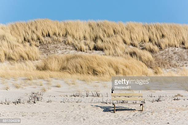 Germany, Schleswig-Holstein, Sylt, bench on dune