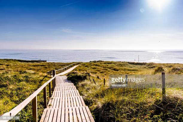 germany, schleswig-holstein, sylt, wooden walkway through dunes - boardwalk stock pictures, royalty-free photos & images