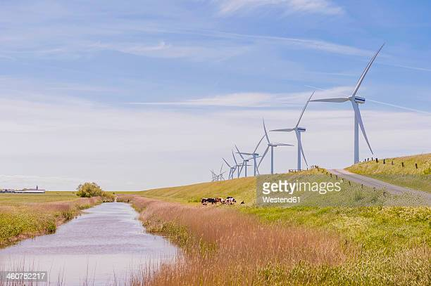 Germany, Schleswig-Holstein, View of wind turbine in fields