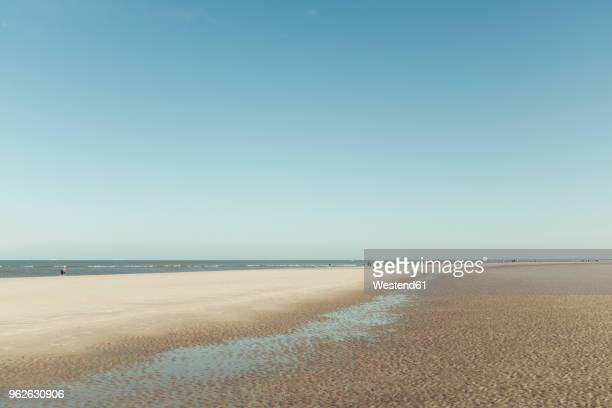 germany, spiekeroog, beach at low tode - incidental people stock pictures, royalty-free photos & images