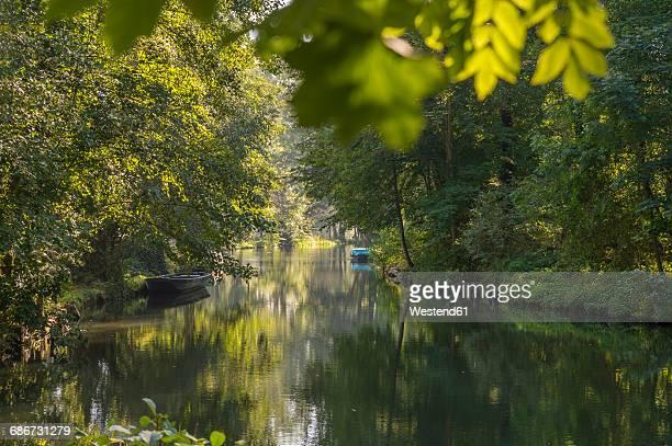 Germany, Spreewald, river Spree between Lehde and Luebbenau