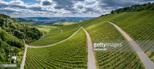 Germany, Stuttgart, aerial view of vineyards at Kappelberg