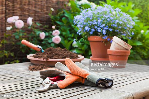 Germany, Stuttgart, Gardening equipment on  wooden table