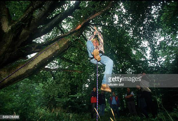 Team Craft Manager Survival Training Lawyers and managers of Daimler Chrysler Carl Zeiss Weigle furniture workshops climbing up a tree with rope
