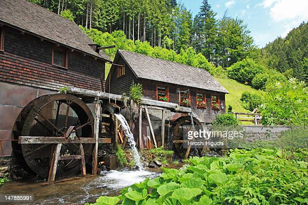 Germany, the Black Forest