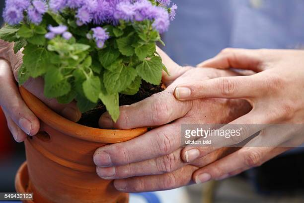 Germany: Therapy. A patient during the therapy for the hands. MODEL RELEASED