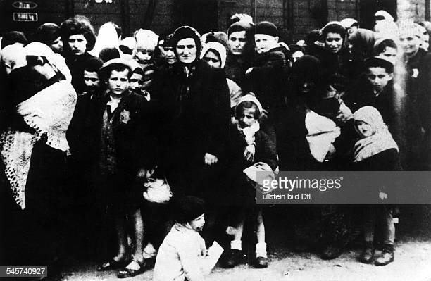 Germany Third Reich concentration camps 193945 Hungarian Jews after their arrival in Auschwitz Summer 1944