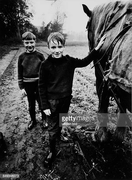 Germany two boys standing in the rain on the field with a draught horse in Lower Saxony