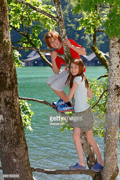 germany, upper bavaria, berchtesgadener land, children climbing on a tree in schoenau at the koenigssee - lake auburn stock photos and pictures