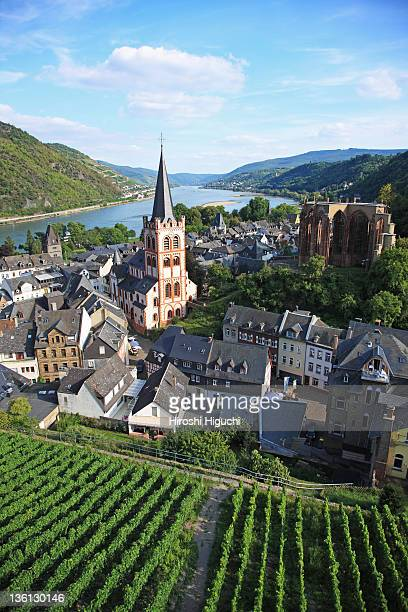 Germany, Upper Middle Rhine Valley