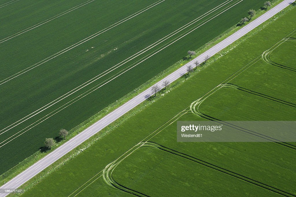 Germany, View of green fields and street : Stock Photo