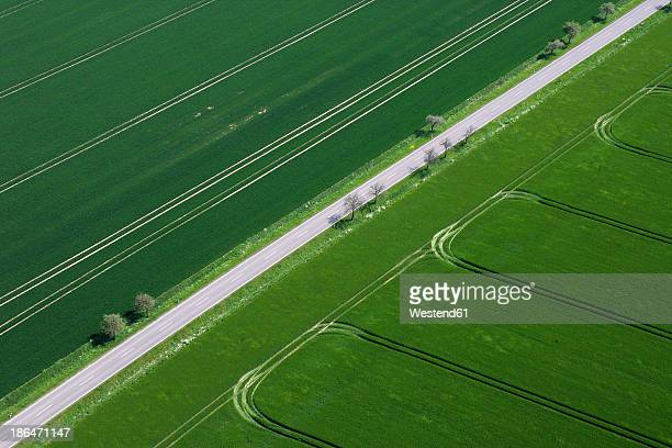 Germany, View of green fields and street