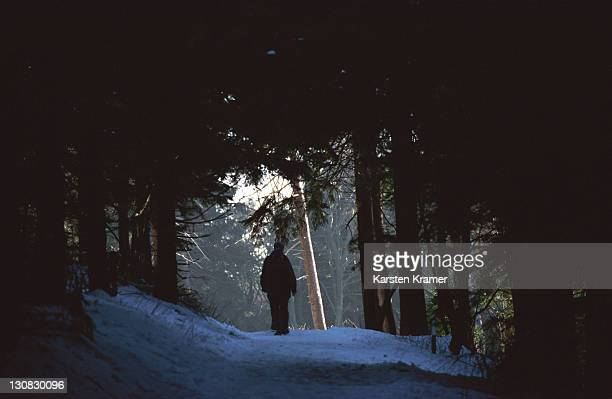 deu, germany: walking through winter landscape on the hill named feldberg in the taunus hills north of frankfurt - baum stock pictures, royalty-free photos & images