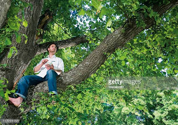Germany, Young man sitting on tree