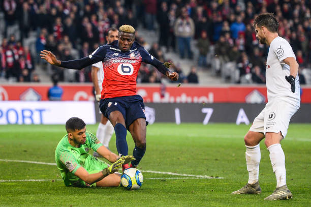 MHSC -EQUIPE DE MONTPELLIER -LIGUE1- 2019-2020 - Page 3 Geronimo-rulli-of-montpellier-and-victor-osimhen-of-lille-during-the-picture-id1188345617?k=6&m=1188345617&s=612x612&w=0&h=3gfQGC1a2dcxdbRyRUVJnubNnQdayIHxpMD3TjBn5Wk=