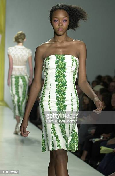 Gerren Taylor wearing Tracy Reese Spring 2004 during MercedesBenz Fashion Week Spring 2004 Tracy Reese Runway at Bryant Park in New York City New...