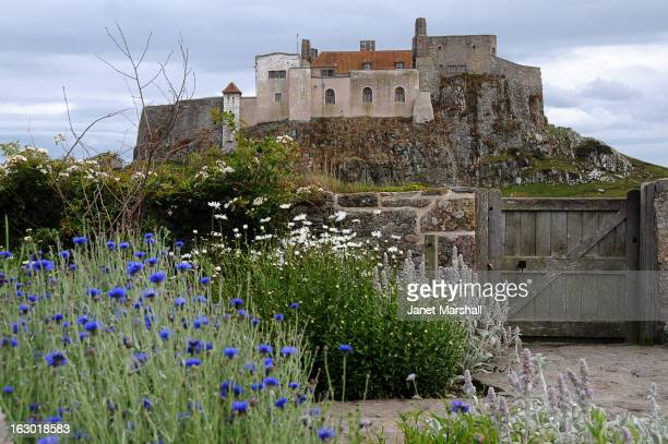 CONTENT] Gertrude Jekyll designed the garden so it would be at its best during the summer months and today's gardeners stick to that concept