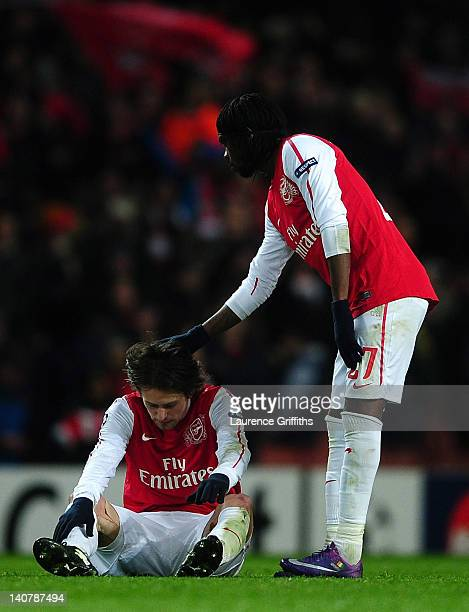 Gervinho consoles team mate Tomas Rosicky of Arsenal after the UEFA Champions League Round of 16 second leg match between Arsenal and AC Milan at...