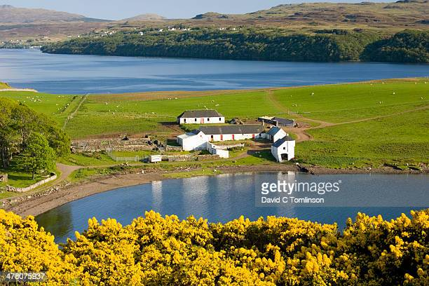 Gesto Bay and Loch Harport, Skye, Scotland