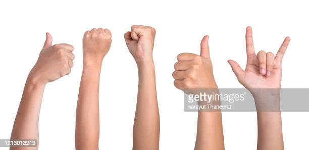 gesturing children's hands on white background - dedo humano fotografías e imágenes de stock