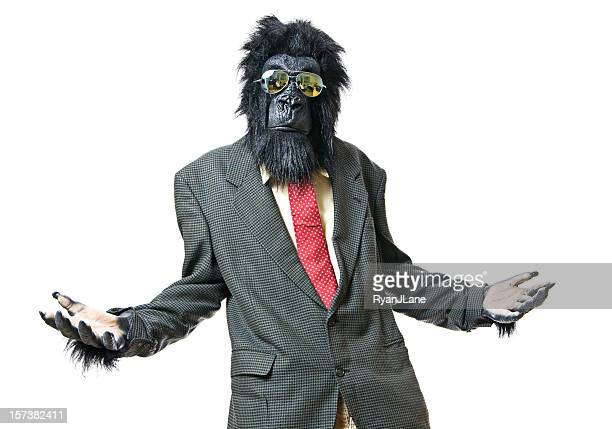gesturing gorilla businessman asks a question - monkey suit stock pictures, royalty-free photos & images