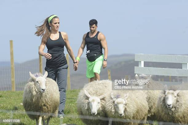 Get Your Sheep TogetherIn this Active Route Marker Wrestlers Brooke and Robbie must herd a flock of sheep through an obstacle course Once all the...
