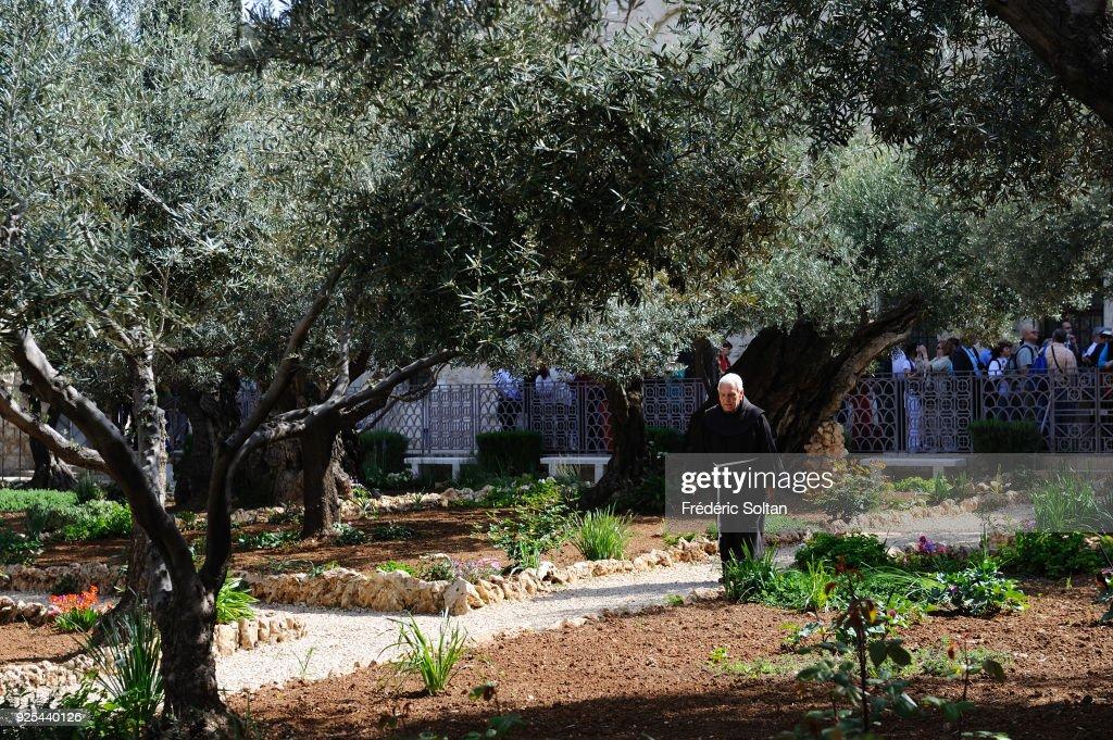 Israel : Illustration : News Photo