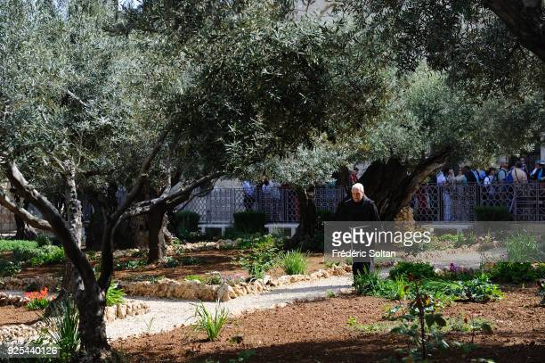 Gethsemane is an urban garden at the foot of the Mount of Olives in Jerusalem, most famous as the place where Jesus prayed and his disciples slept...