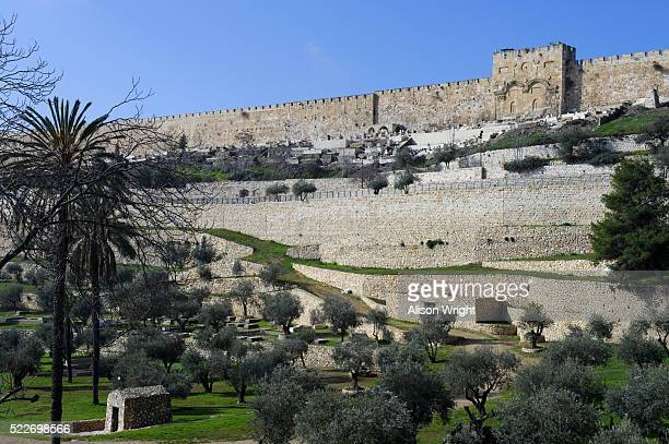 gethsemane's church in jerusalem - garden of gethsemane stock pictures, royalty-free photos & images