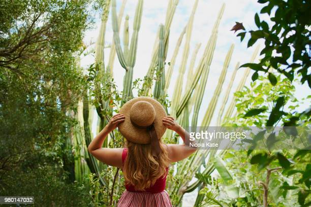getting mesmerised by nature is always a good idea - wavy hair stock pictures, royalty-free photos & images