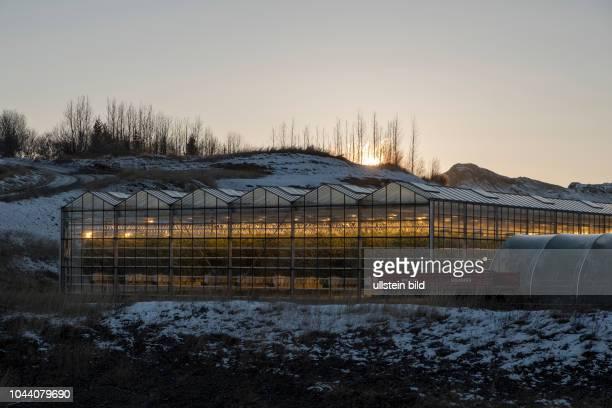 Gewächshäuser im aktiven Thermalgebiet um Flúðir
