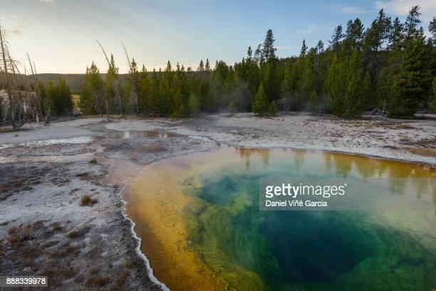 Geyser at Yellowstone National Park