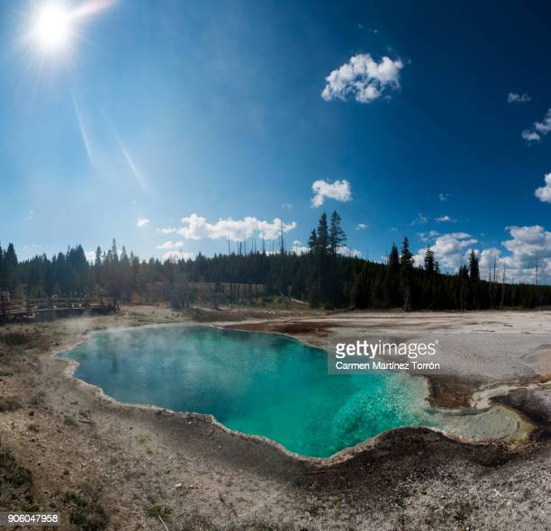 Geyser in Yellowstone National Park. Wyoming, USA.
