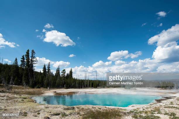 geyser in yellowstone national park. wyoming, usa. - unesco werelderfgoed stockfoto's en -beelden