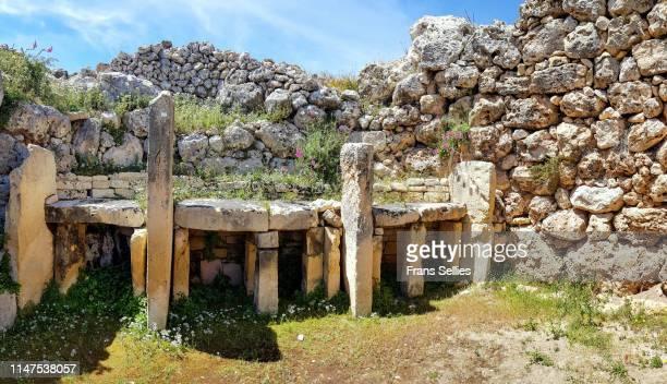 ggantija, a neolithic megalithic temple complex on gozo island (malta) - insel gozo malta stock-fotos und bilder