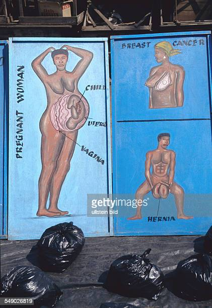 A typical street pharmacy in Ghana The signs show the illness that can be cured by the plants the woman is selling