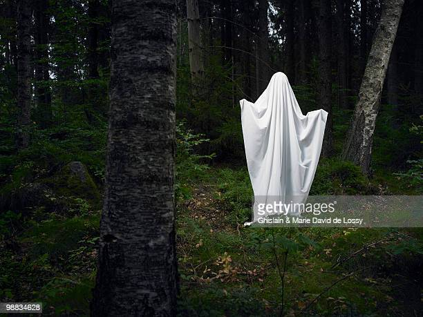 ghost on a rock, in the woods - fantasma - fotografias e filmes do acervo