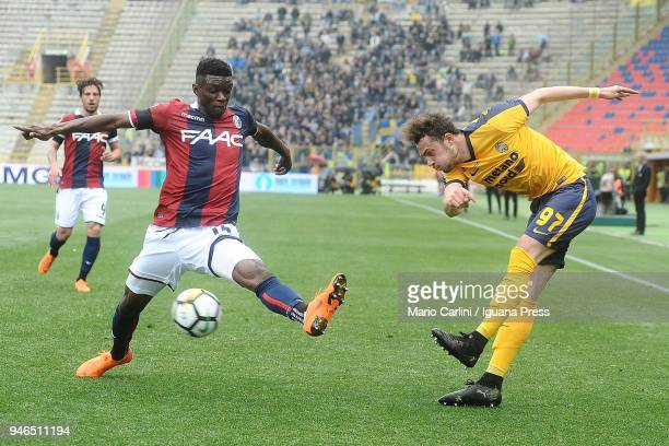 Gian Flilppo Felicioli of Hellas Verona FC in action during the serie A match between Bologna FC and Hellas Verona FC at Stadio Renato Dall'Ara on...