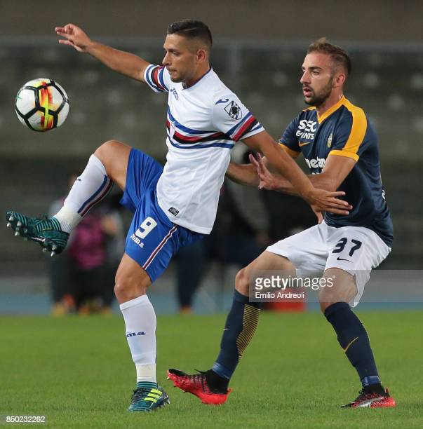 Gianluca Caprari of UC Sampdoria competes for the ball with Enrico Bearzotti of Hellas Verona during the Serie A match between Hellas Verona FC and...