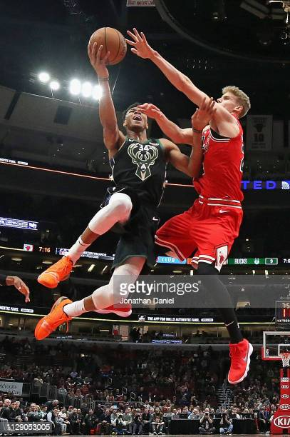 Giannis Antetokounmpo of the Milwaukee Bucks drives against Lauri Markkanen of the Chicago Bulls at the United Center on February 11 2019 in Chicago...