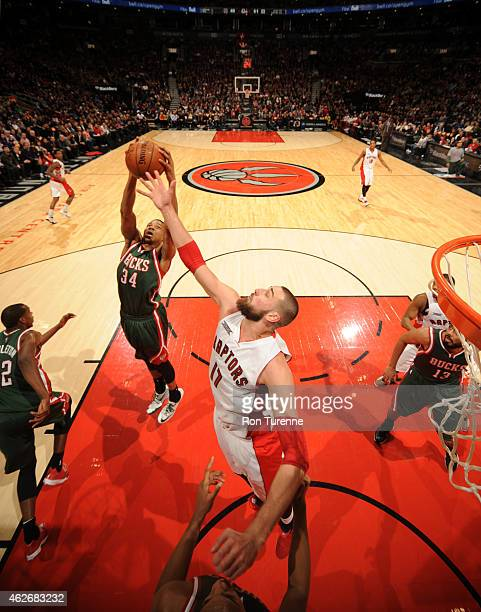 Giannis Antetokounmpo of the Milwaukee Bucks grabs the rebound against the Toronto Raptors on February 2 2015 at the Air Canada Centre in Toronto...