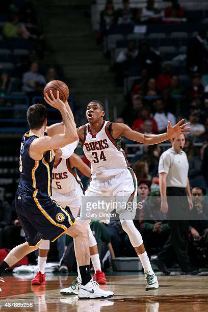 Giannis Antetokounmpo of the Milwaukee Bucks guards his position against the Indiana Pacers on March 26, 2015 at BMO Harris Bradley Center in...