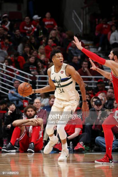 Giannis Antetokounmpo of the Milwaukee Bucks handles the ball against the Chicago Bulls on January 28 2018 at the United Center in Chicago Illinois...