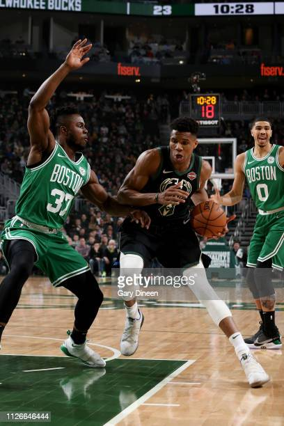 Giannis Antetokounmpo of the Milwaukee Bucks handles the ball during the game against the Boston Celtics on February 21 2019 at the Fiserv Forum...